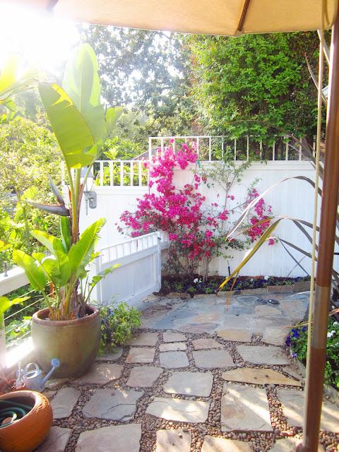 garden with flagstone path and fuschia bouganvillea