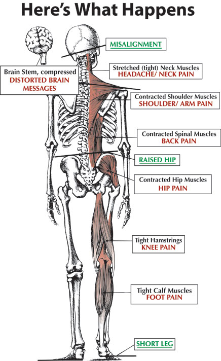 special test for low back pain pdf