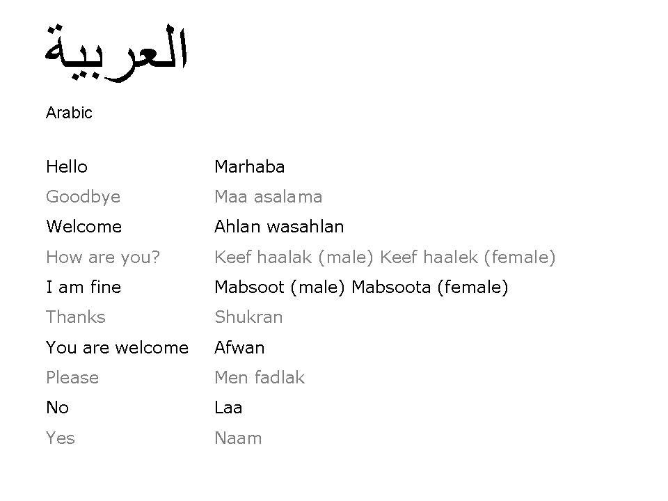 simple essay in arabic language