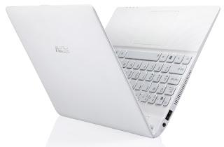 Asus Eee PC X101, Asus NetBook