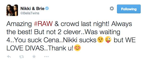 Bella Twins Twitter response