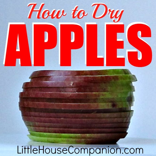 How to dry apples. #recipe #apple