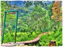 Wisata ke Gunung Puntang Bandung