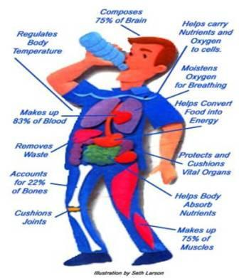 Health – Benefits of Drinking Water