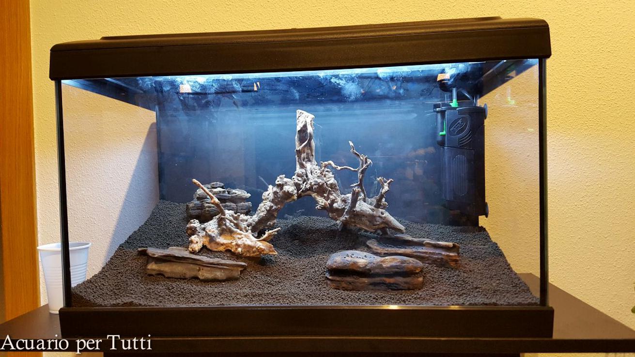 Acuario per tutti montaje de acuario low tech for Calentador acuario