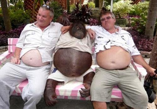 Dos hombres abrazados a un mono, los 3 barrigudos