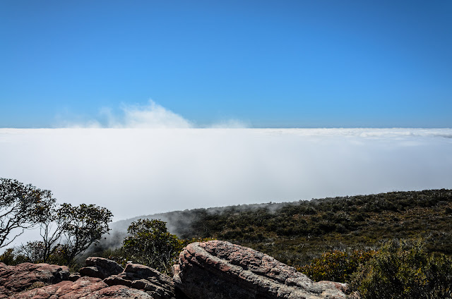 low cloud from mount william summit