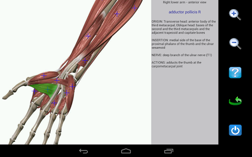 Visual Anatomy Android APK +Data