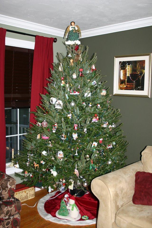 Macam Macam Pohon Natal Yang Indah 2014   Kata Ilmu