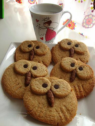 çocuklar için baykuş kurabiye