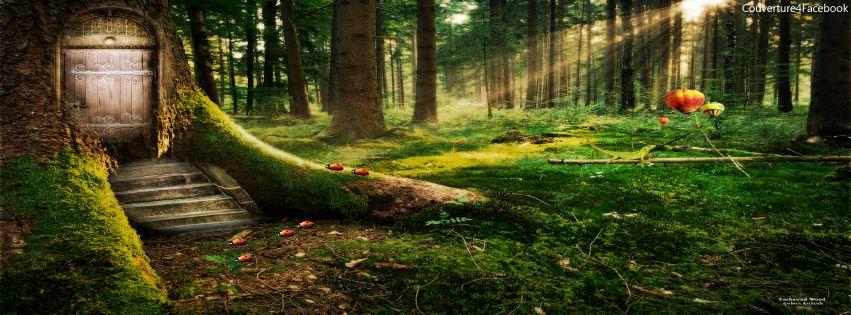 Forêt enchantée de votre Fée Mary, une coccinelle égarée... For%C3%AAt%2Benchant%C3%A9e-couverture-facebook