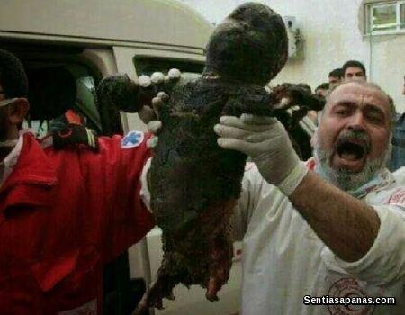 Holocaust-in-Palestine
