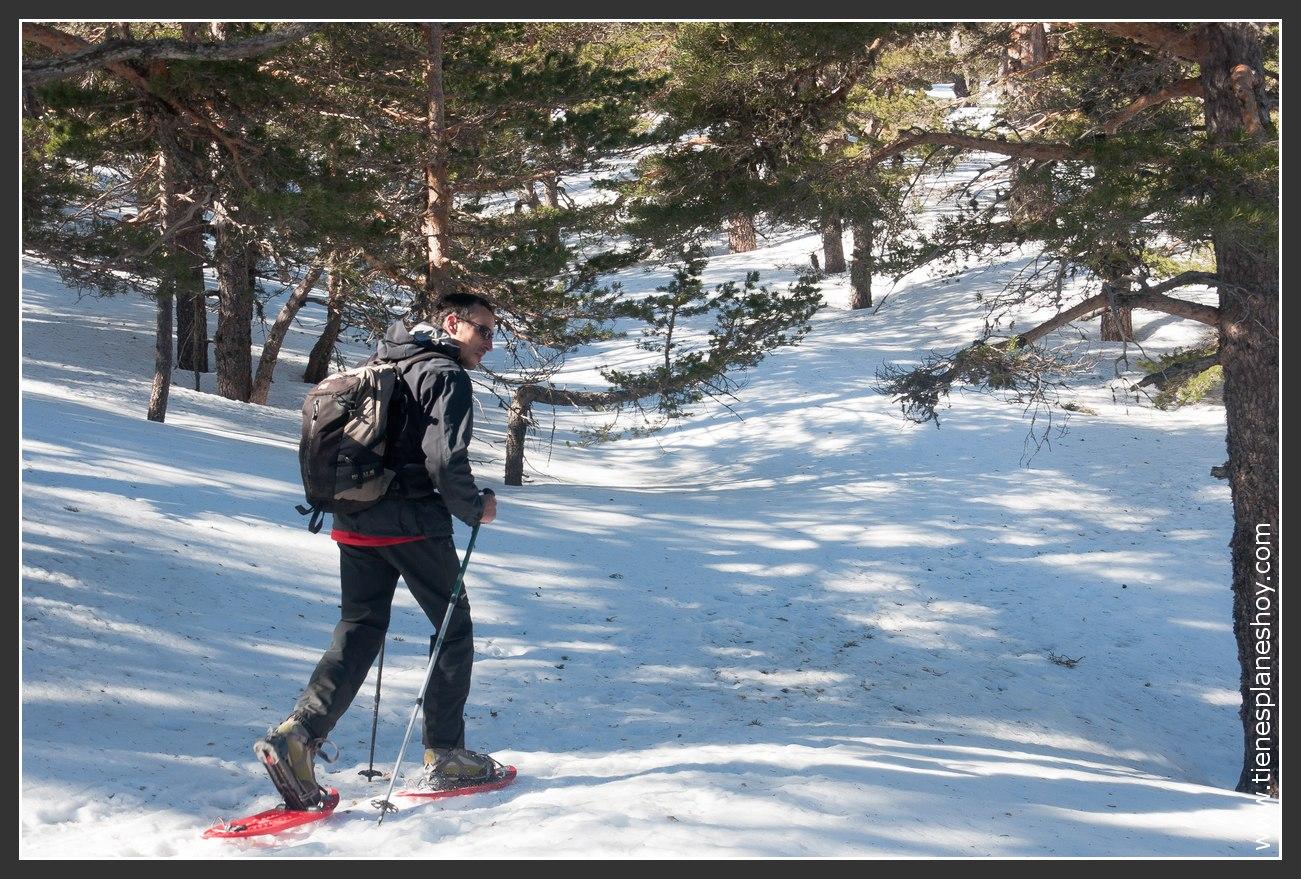 Excursión raquetas de nieve desde el Puerto de Navacerrada