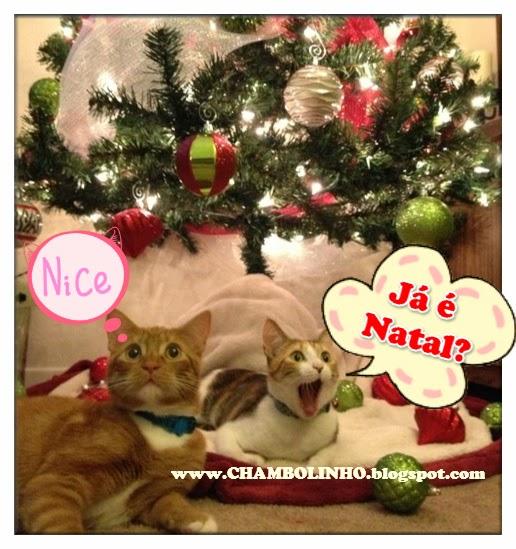Recadinho de Natal Engraçado para Facebook