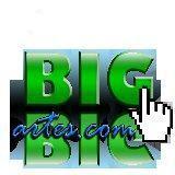 Parceiros Big Artes