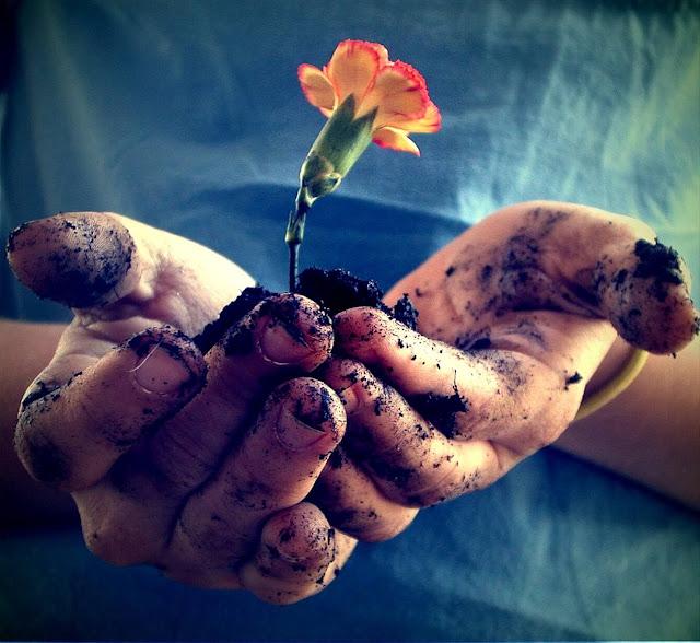 Cara Mencapai Sikap Kerendahan Hati
