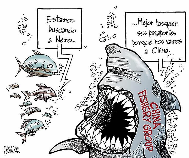 Peces chinos molina dibujos for Imagenes de peces chinos