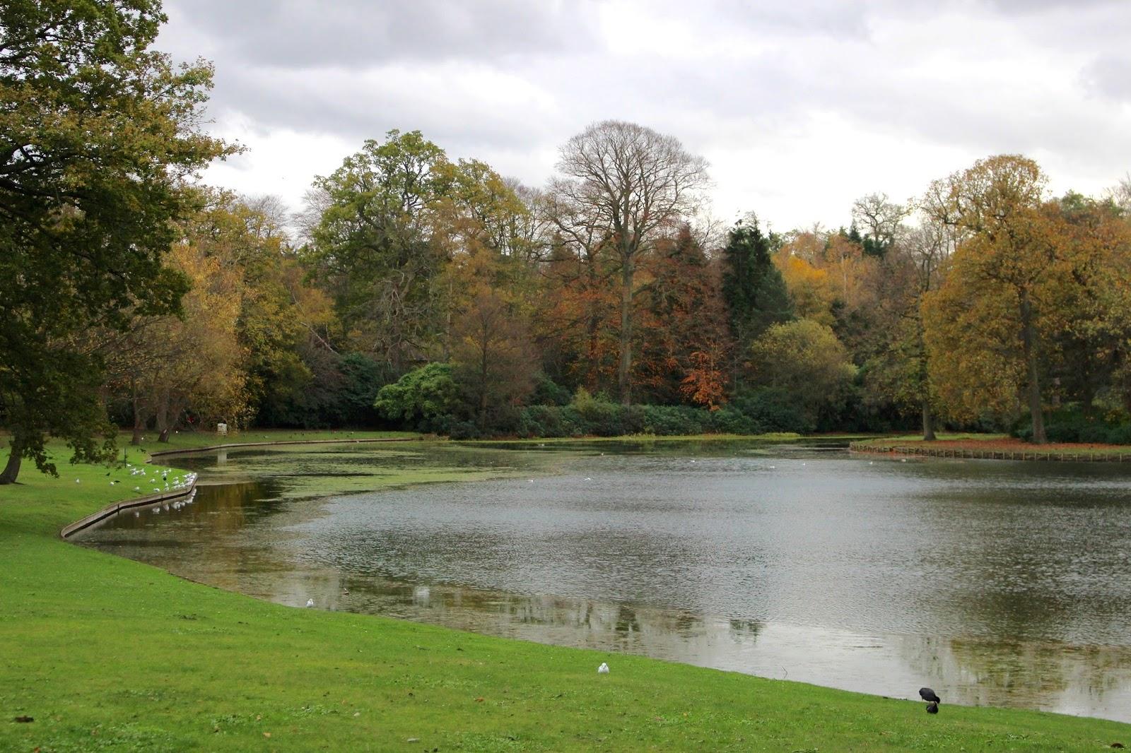 Claremont Landscape Garden Autumn Winter