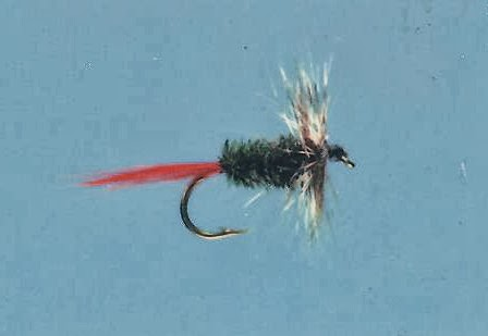 Picture of the Speckled Hackle fly.