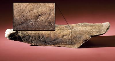 美佛州 史前石雕(美佛州發現1.3萬年的史前石雕)