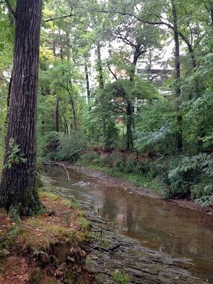 Coleman Creek Greenway UALR
