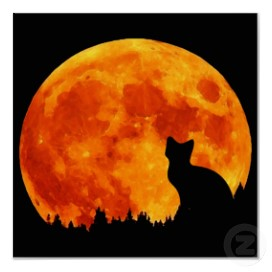 Des couleurs de la lune Chat+lune+orange