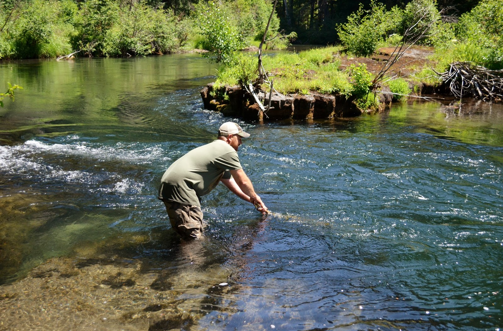 Rogue river and southern oregon fly fishing guide big for Trout fishing oregon