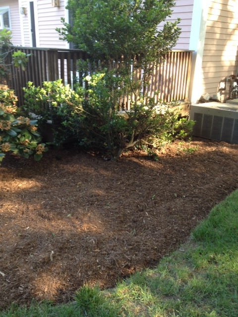 Backyard Mulch Pile : Under The Suburban Sun I am queen of the mulch pile