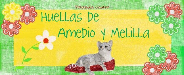 Huellas de Amedio y Melilla