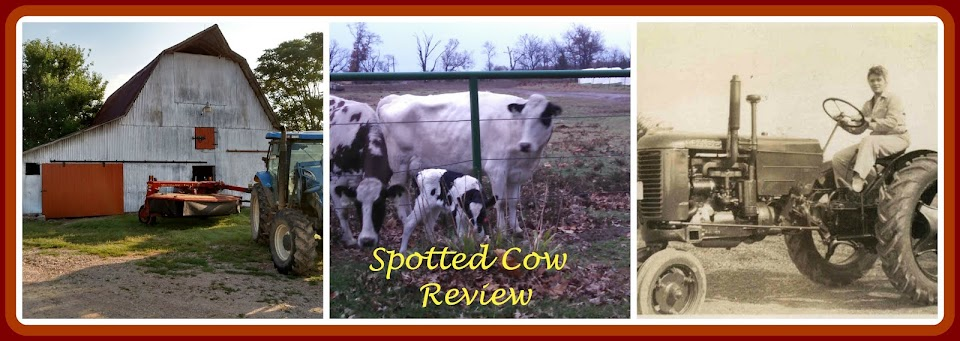 Spotted Cow Review