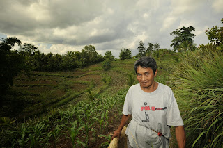 farmer with strips of vegetation on hill