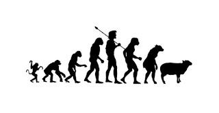 la evolucion del hombre de mono a borrego
