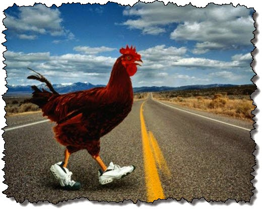 http://bitsandpieces.us/2014/06/29/why-did-the-chicken-cross-the-road/