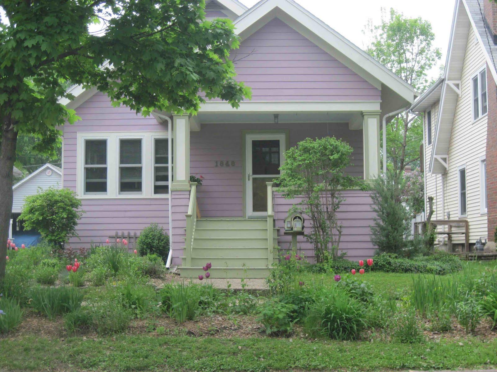 Pleasant Living Madison 39 S Purple Cult