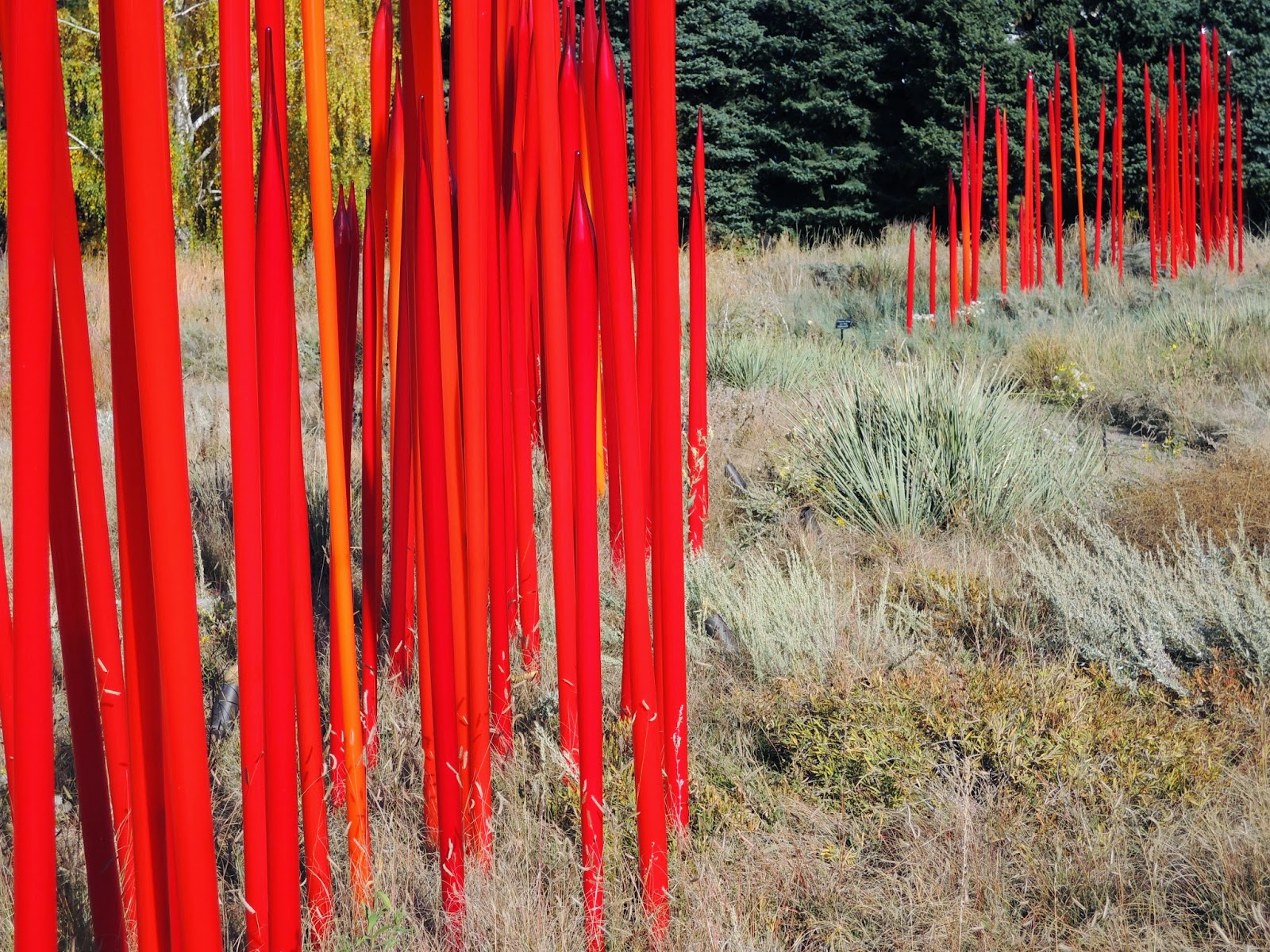 glass sculpture, Denver Botanic Gardens, Dale Chihuly