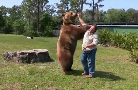 Οικογένεια στην Φλόριντα εκτρέφει 13 αρκούδες στην αυλή της