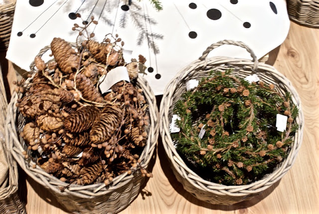 kranssi, joulu, zicos, mr plant