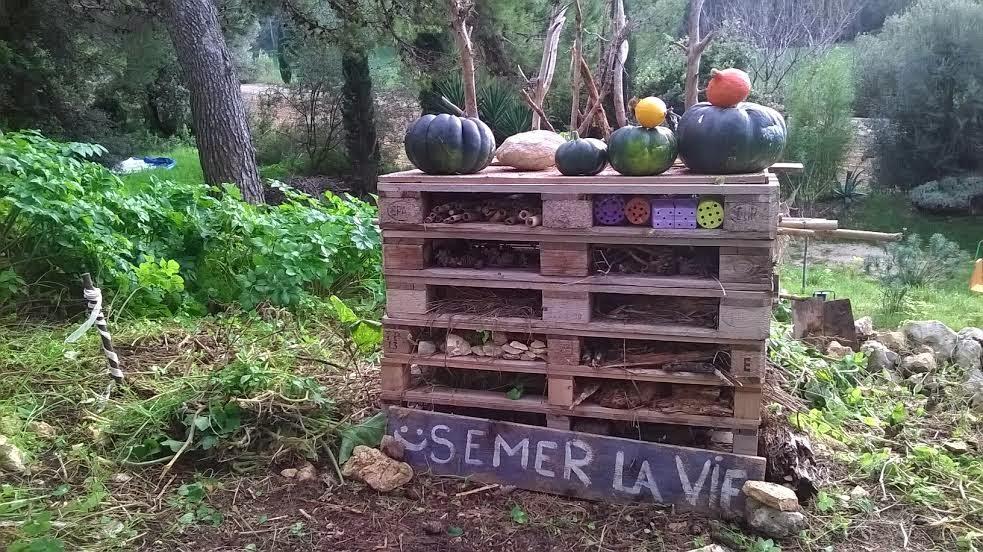 Jardin participatif innovant semons le coeur du monde for Jardin vivant