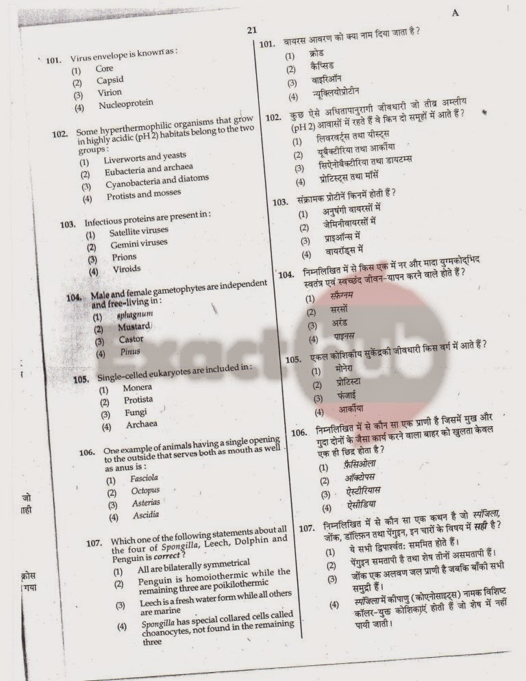 AIPMT 2010 Exam Question Paper Page 21