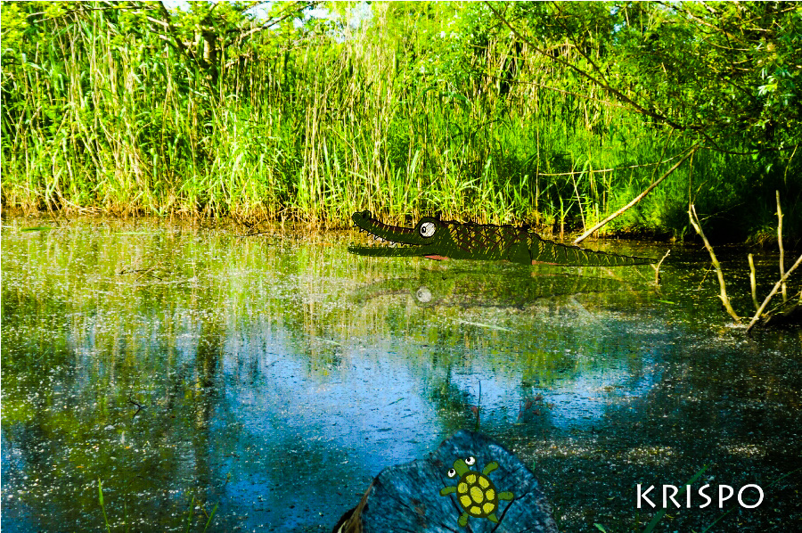 dibujo de cocodrilo en fotografia de estanque en hondarribia