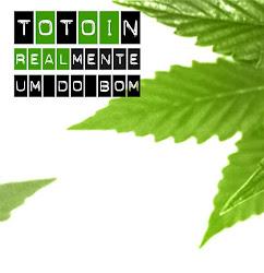 CD Totoin - REALmente um do bom (2011)