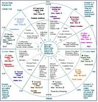 Astrología psicológica, el lenguaje de las energías