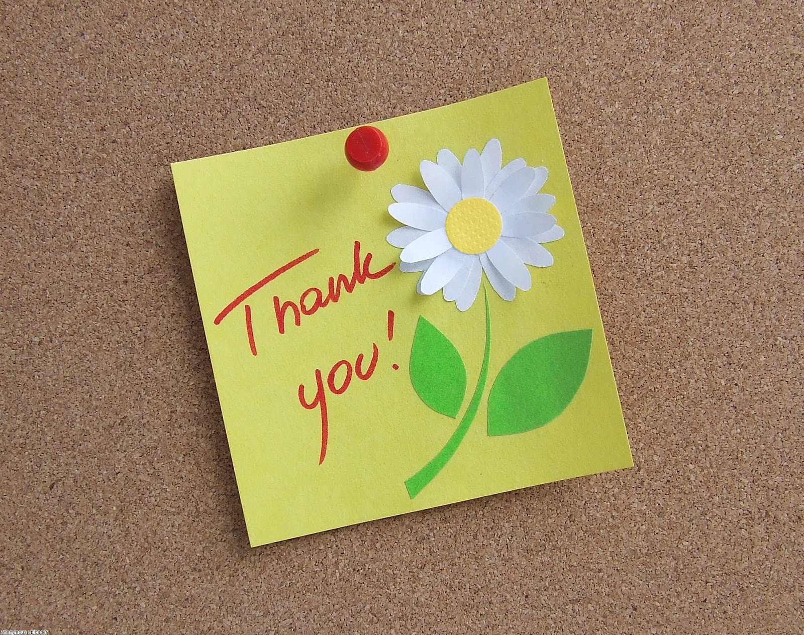 Pinned Thank You Pictures