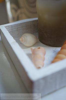 Maritime Sommerdeko mit Sand und Muscheln
