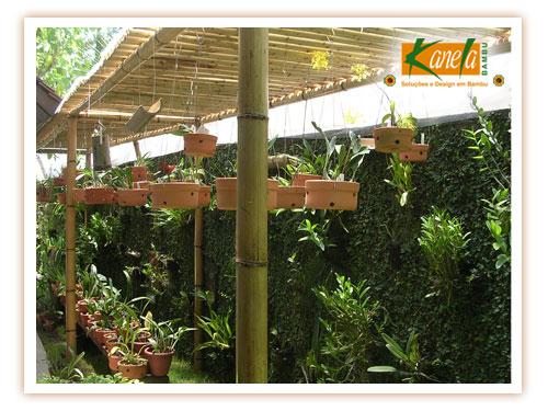 Gardens of my life bamb a madeira do futuro - Pergola bambu ...