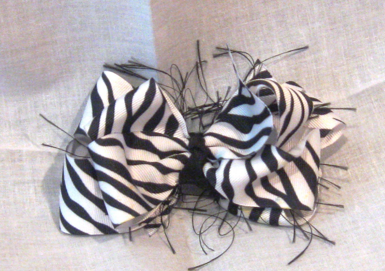 foto zebra - gambar hewan - foto zebra