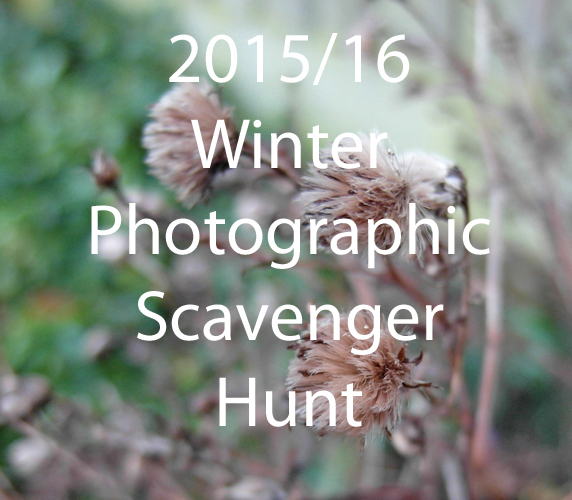 Winter Photo Scavenger Hunt 2015/2016