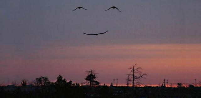 cielo+sonriente2.jpg