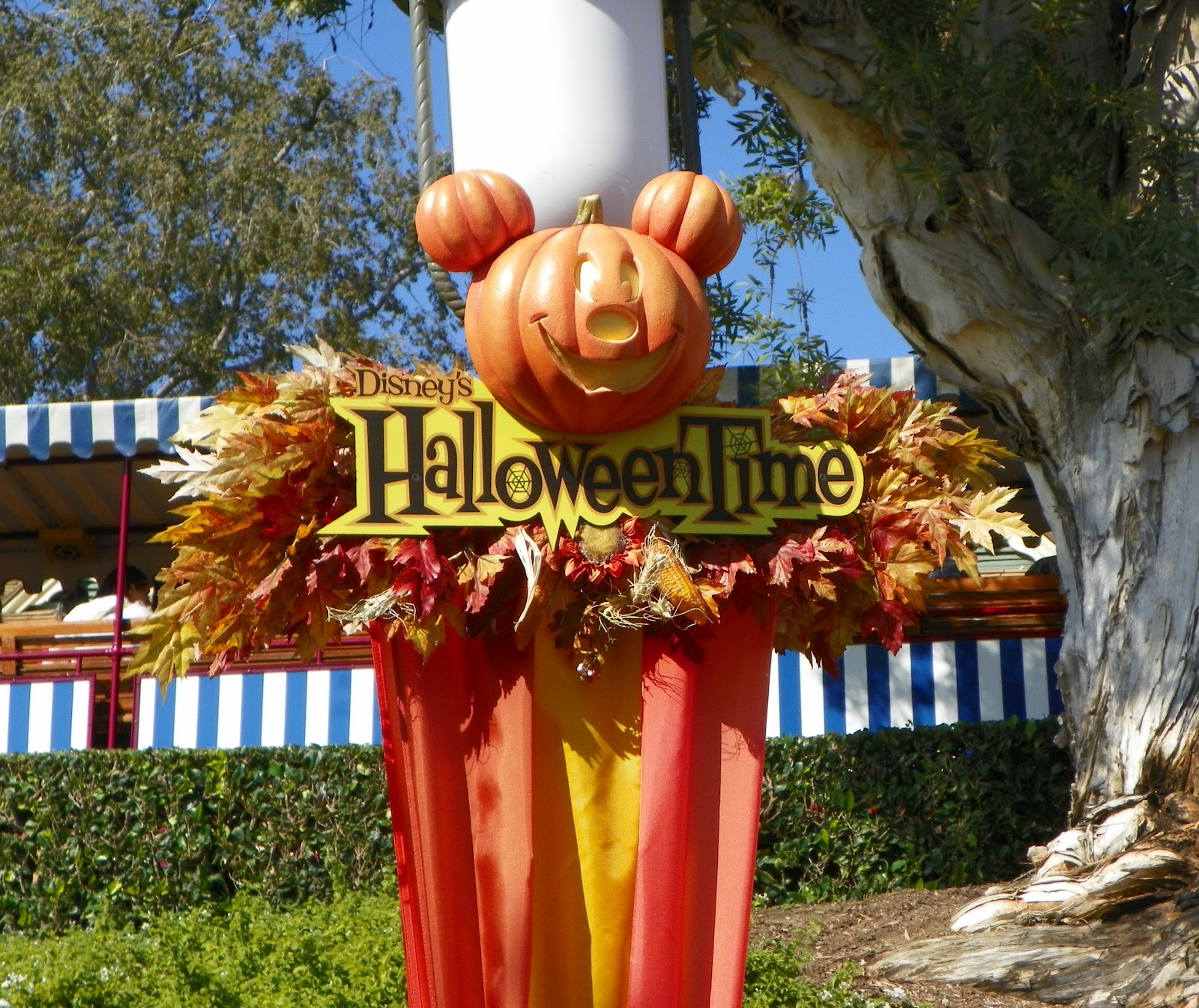 Pixie Pranks and Disney Fun: Disneyland Soon To Be Haunted for ...