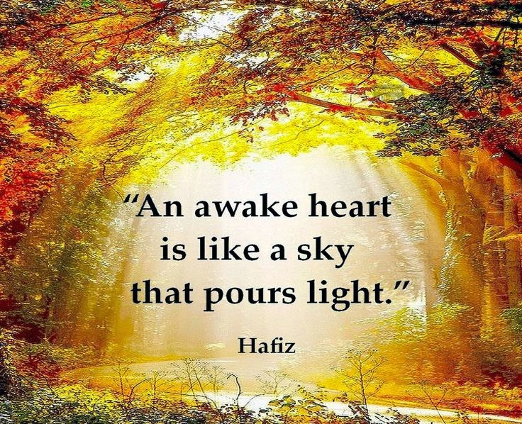 """An awake heart is like a sky that pours light."" ~ Hafiz Picture of golden light pour through trees in a forest over a stream."